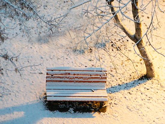 Banca mea , prima ninsoare (foto M. Pete)