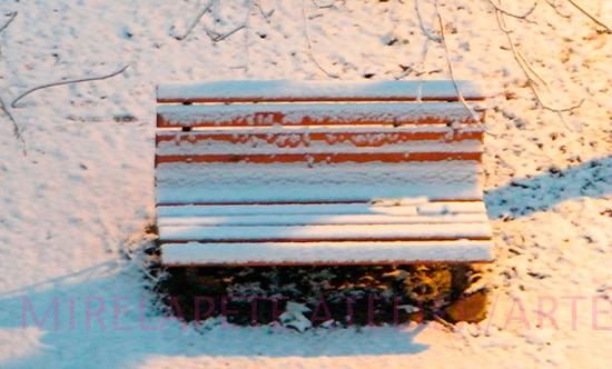 Banca mea, prima ninsoare (foto M. Pete)