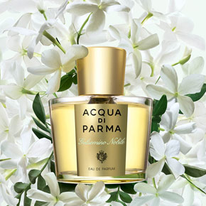 121112_acquadiparma_hero